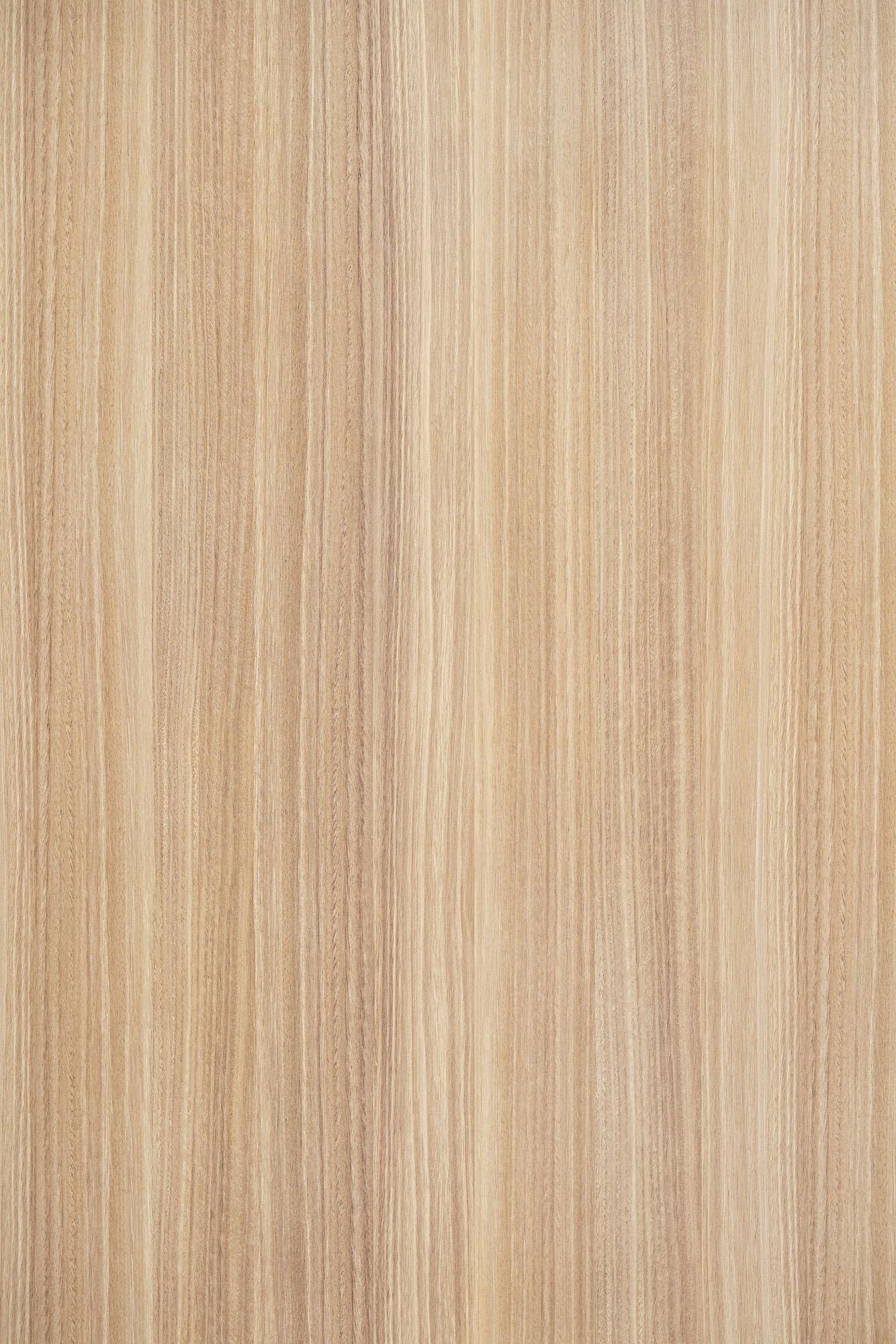 Alin Eucalyptus
